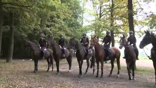 Het paardrijden