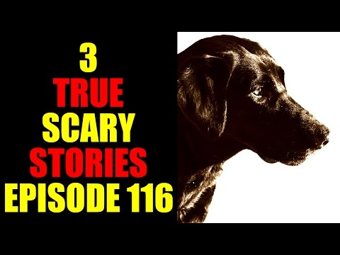 3 TRUE SCARY STORIES EPISODE 116