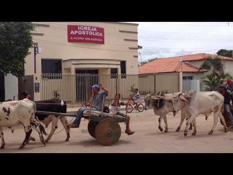 TRADIÇÃO: Passeata de Carro de boi em Pindaí