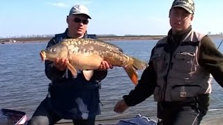 рыбалка видео ловля фидером о рыбалке всерьез