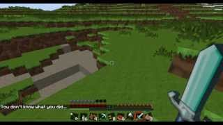 Minecraft-Living With Herobrine, Death To The Wither
