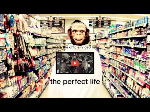 Moby - The Perfect Life (Fuck Buttons Remix) - Audio
