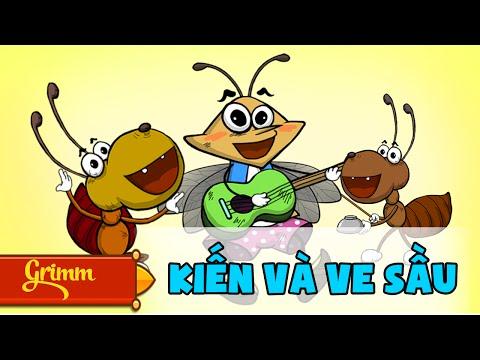 Kiến và Ve Sầu - Truyện ngụ ngôn hài hước cho bé - Phim hoạt hình hấp dẫn