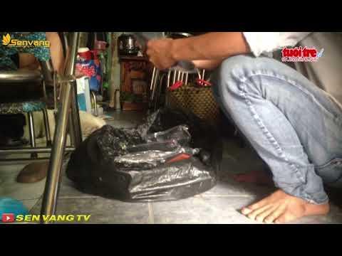 Lén lút bán súng Trung Quốc bắn đạn bi, Tin tức online 24h, hình sự, giải trí