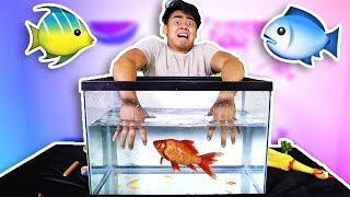 WHAT'S IN THE AQUARIUM CHALLENGE!