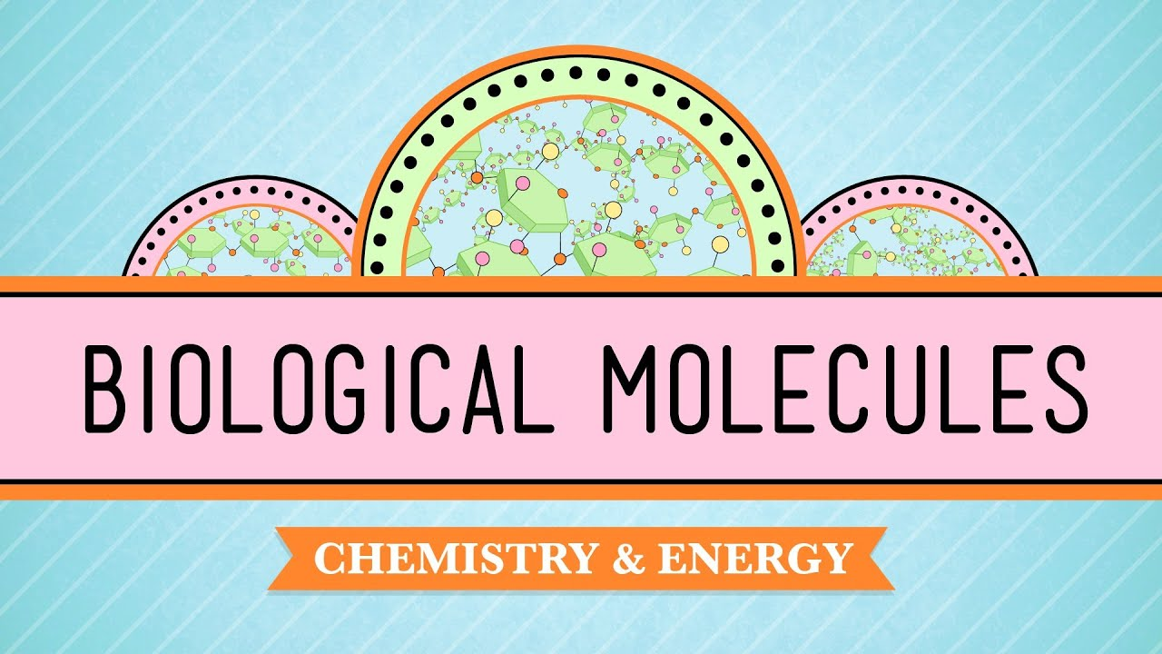 crash course biology videos Biology i module 6: structure and function of plasma membrane search for:  video: in da club—membranes and transport (crash course #5).