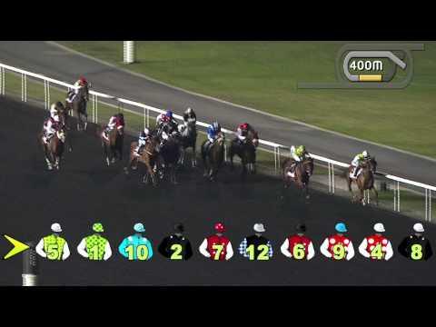 Vidéo de la course PMU MAZRAT AL RUWAYAH