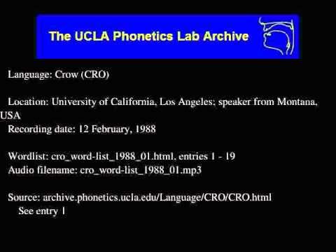 Crow audio: cro_word-list_1988_01