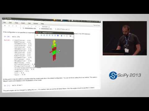 Image from Estimating and Visualizing the Inertia of the Human Body with Python; SciPy 2013 Presentation