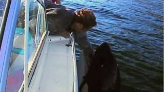 The Whale   trailer #1 US (2011)