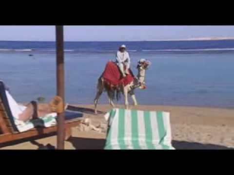 EGYPT TOURISM - Sharm el Sheikh