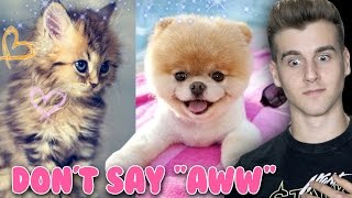 "Try Not To Say ""Aww"" (Impossible Challenge)"