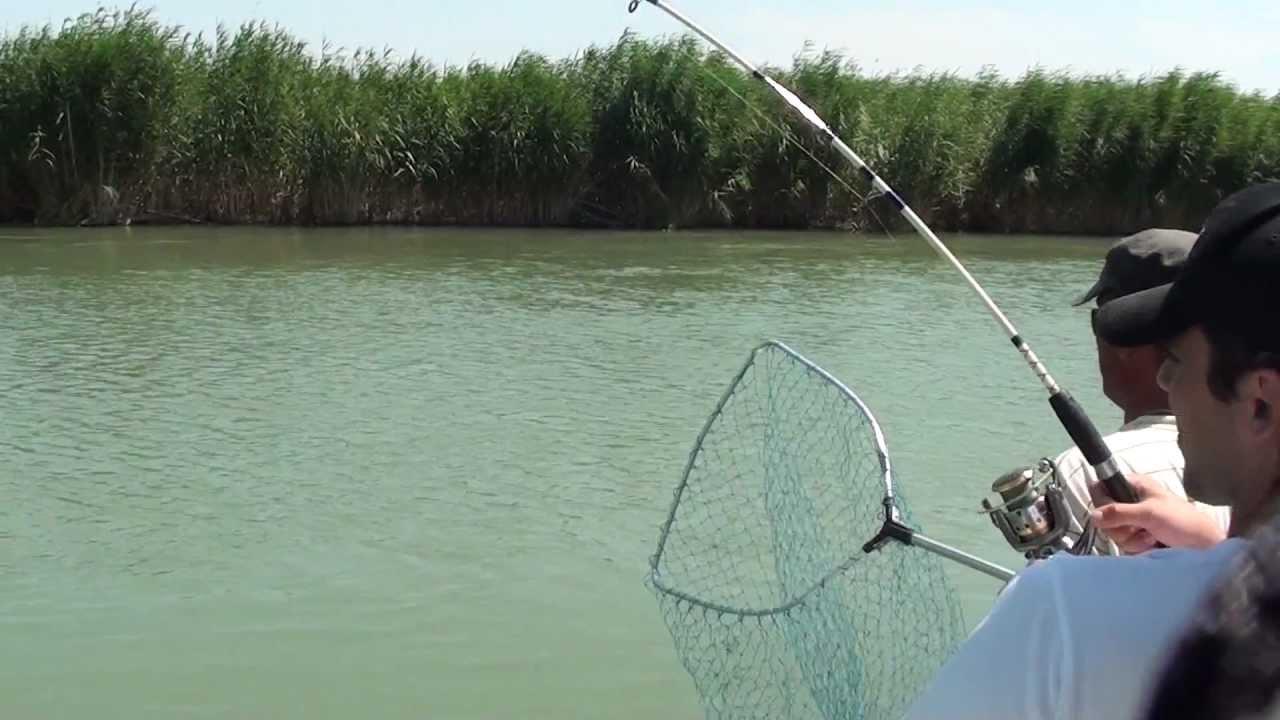 рыбалка на реке тургай видео