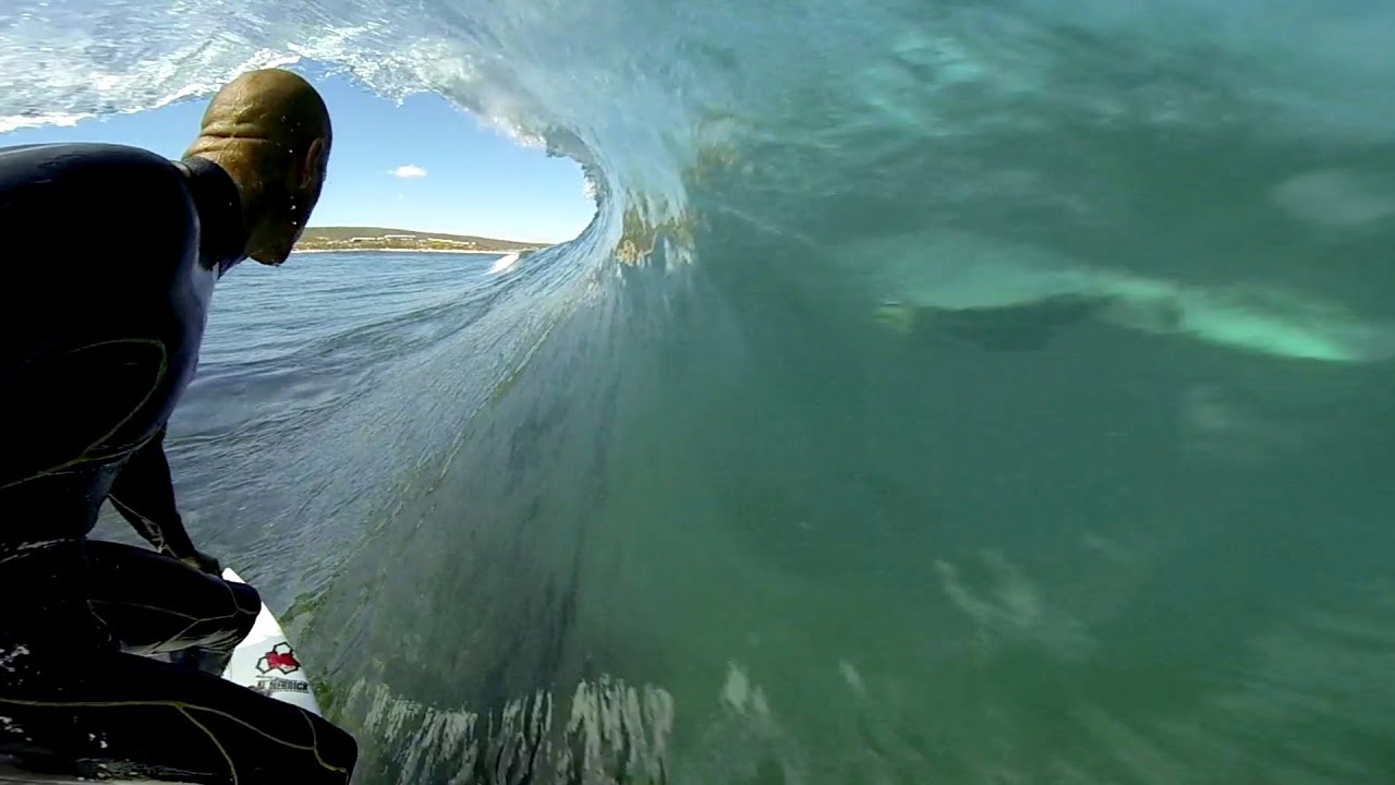Kelly Slater surfe avec les dauphins