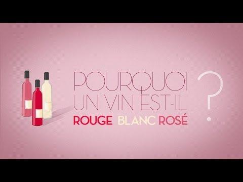 Pourquoi un vin est-il rouge, blanc, rosé ? – Par tout levin.com