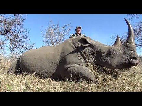 White Rhino hunt 2