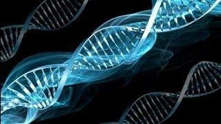 DNA Cywilizacji 4.01.2013