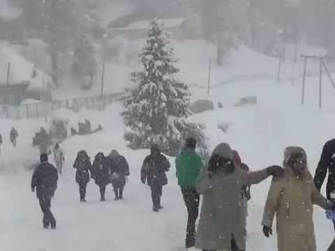 Heavy Snow Fall In Beautiful Gulmarg