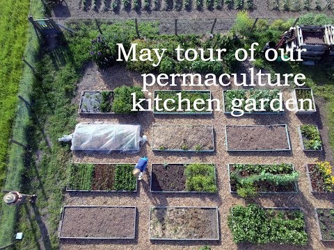 May tour of our permaculture  kitchen garden