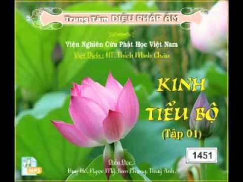Kinh Tiểu Bộ 1 Phần 2 - DieuPhapAm.Net.mp4 - Phật Pháp Vô Biên
