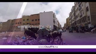 لقطة اليوم من قلب مدينة الدار  البيضاء..شوفو و حكمو   |   بــووز