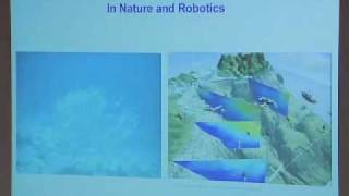 Naomi Leonard: Flocks and Fleets: Collective Motion in Nature and Robotics