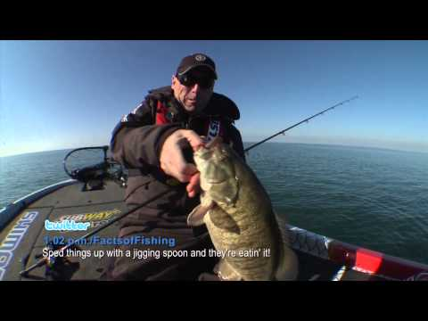 Speed up for Giant Fall Smallmouth Bass - Dave Mercer's Facts of Fishing THE SHOW
