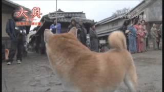 映画『大奥~永遠~[右衛門佐・綱吉篇]』メイキング映像