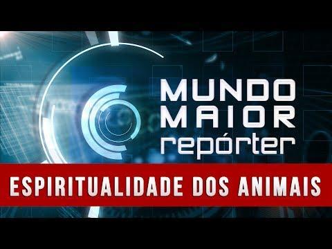 Mundo Maior Repórter - Espiritualidade dos Animais (08/03/2014)