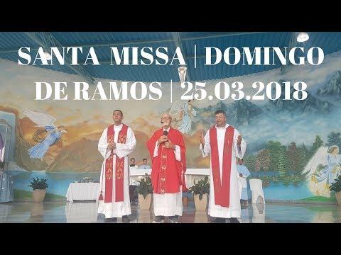 Santa Missa | 25.03.2018 | Domingo de Ramos | Padre José Sometti | ANSPAZ