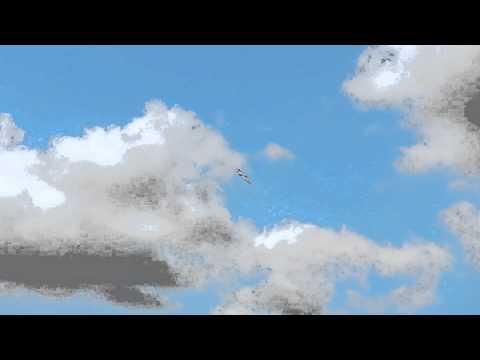 Flugvideo: Hai 1 Evo von Wolfgang Werling