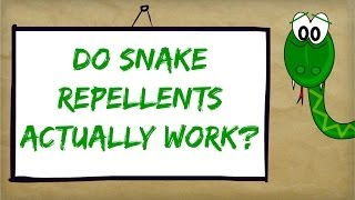 Best Snake Repellent Reviews Do Natural & Homemade