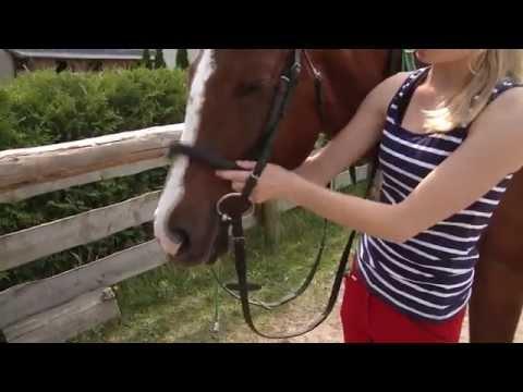 Wszystko o koniach - siodłanie konia