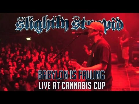 Babylon Is Falling @ Cannabis Cup 11-24-09 Amsterdam, NL
