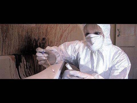Phim tài liệu - Ứng Dụng Khoa Học Phòng Chống Tội Phạm