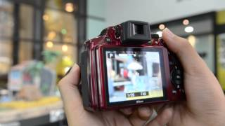 12fly TV Nikon CoolPix P510 Tutorial Video With Dorothy
