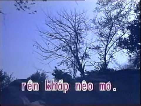 karaoke tanco Han Mac Tu2_ ca voi 545.wmv
