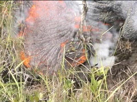 Raw: Lava on Track to Hit Hawaii Market
