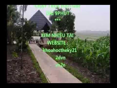 ĐAM GIỖ ÔNG VŨ VĂN RƯỠNG tại kênh 5 cái sắn tỉnh An Giang 9 phút