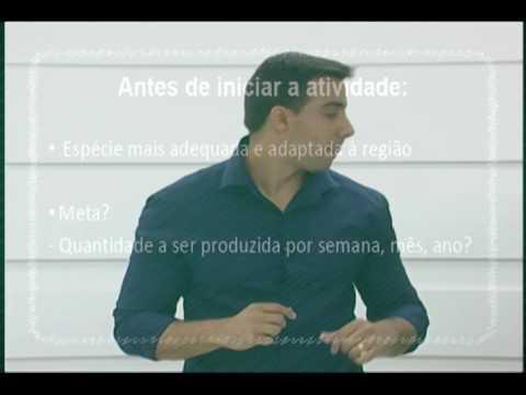 SALA DE AULA - Fundamentos da Piscicultura
