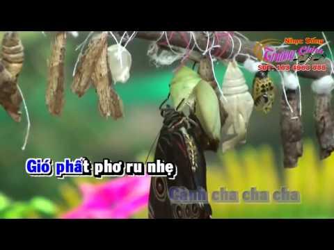 Karaoke   Con Bướm Xuân   DJ Remix   Tone Nam  {Nhạc Sống   Trường Chinh & Lê Quang Bình }