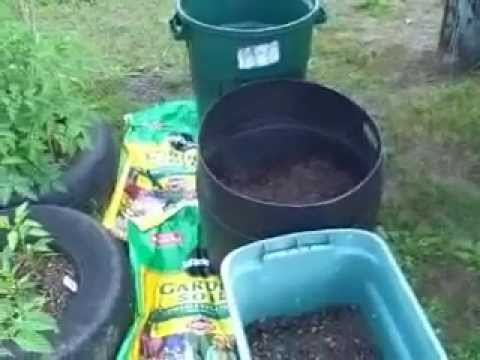 Grow potatoes in container or trash / garbage can
