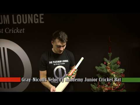 Gray-Nicolls Velocity XP1 Academy JUNIOR Cricket Bat