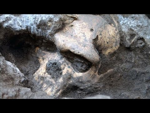 Skull Find Suggests Single Human Species Left Africa