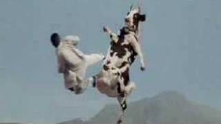 Kung Pow There Goes My Hero