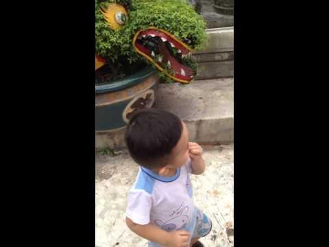 bui doi cho lon phan 1