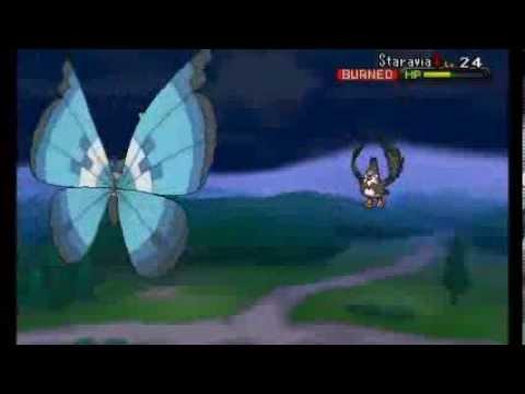 Pokemon X/Y - Walkthrough Part 14 - Geosenge Town and Route 11