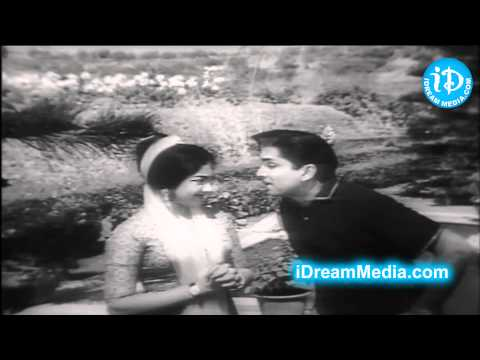 Preminchi Choodu Movie - Nageswara Rao, Rajasree, Chalam Best Scene