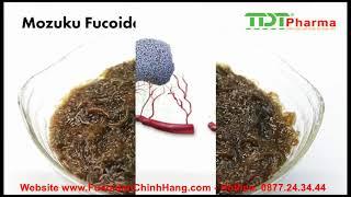 Fucoidan 3-plus hỗ trợ điều trị ung thư sản xuất tại Nhật Bản