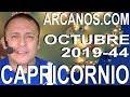 Video Horóscopo Semanal CAPRICORNIO  del 27 Octubre al 2 Noviembre 2019 (Semana 2019-44) (Lectura del Tarot)